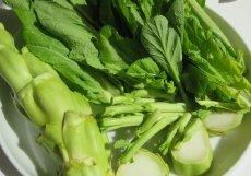 画像7: 無農薬・有機栽培 希少国産ザーサイ菜(生野菜) (7)