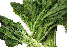 画像1: 無農薬・有機栽培 希少国産ザーサイ菜(生野菜) (1)