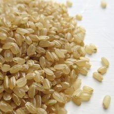 画像8: 無農薬・有機栽培米 新米ひのひかり 精白米2合パック(300g) (8)