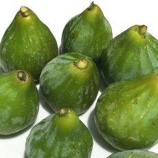 画像3: 無農薬・有機栽培  早生いちじく「ザ キング」  2パック約1kg 送料込 (3)