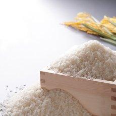 画像5: 新米令和2年度産 無農薬・有機栽培米 ひのひかり 5kg (5)