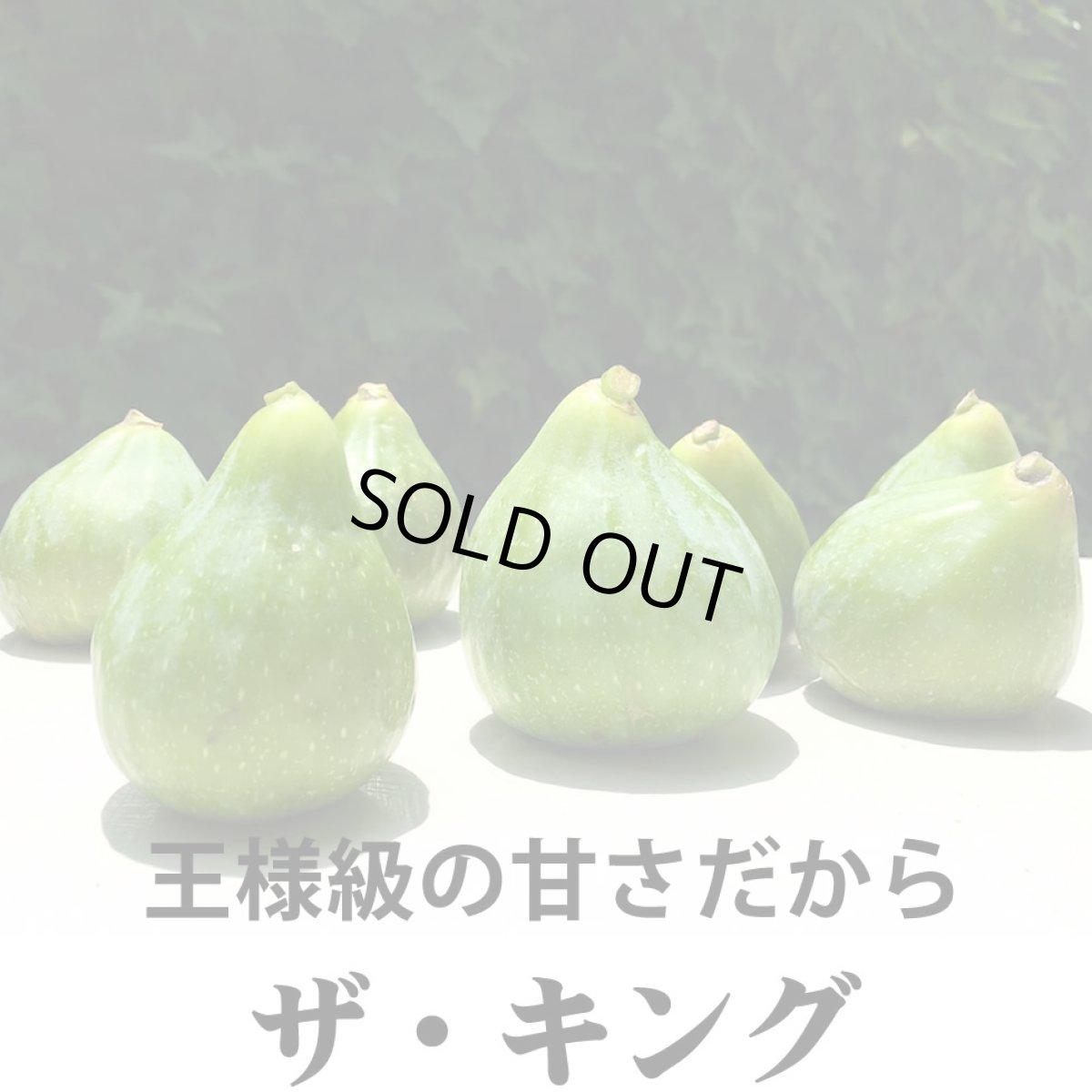 画像1: 無農薬・有機栽培  早生いちじく「ザ キング」  2パック約1kg 送料込 (1)