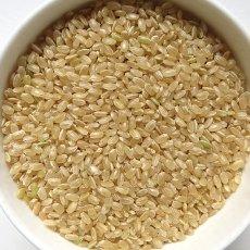 画像7: 令和元年度産 業務用減農薬米 ひのひかり 5kg (7)