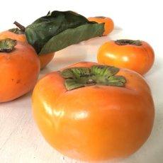 画像5: 無農薬・有機栽培 富有柿 1箱約2kg  送料込 (5)
