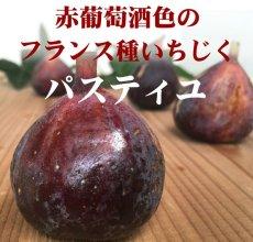 画像2:  無農薬・有機栽培 世界のいちじく* 2パック 送料込 (2)