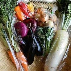 画像6: 無農薬・有機栽培 旬の野菜セット 送料込 (6)