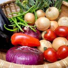 画像2: 無農薬・有機栽培 旬の野菜セット 送料込 (2)
