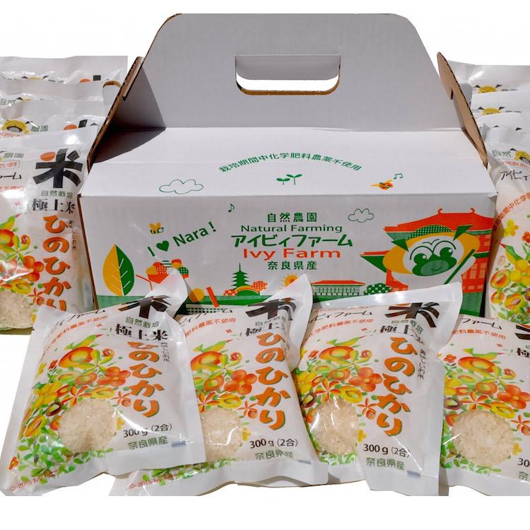 画像1: 無農薬・有機栽培 新米ひのひかり 精白米2合パック(300g)12パック入 送料込 (1)