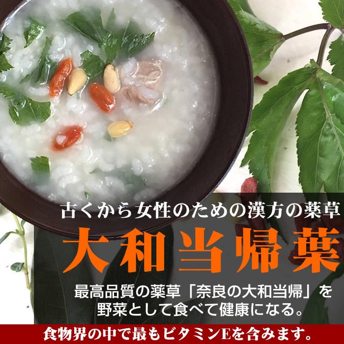 画像1: 無農薬・有機栽培 大和当帰葉 (1)