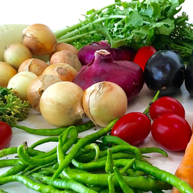 画像1: 無農薬・有機栽培 いつも旬!季節の野菜セット 送料込 (1)