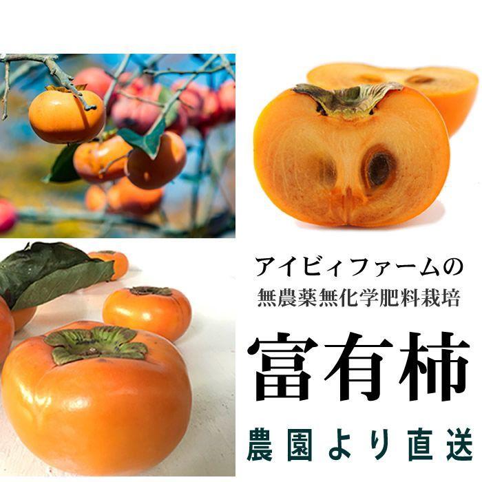 画像1: 無農薬・有機栽培 富有柿 1箱約2kg  送料込 (1)