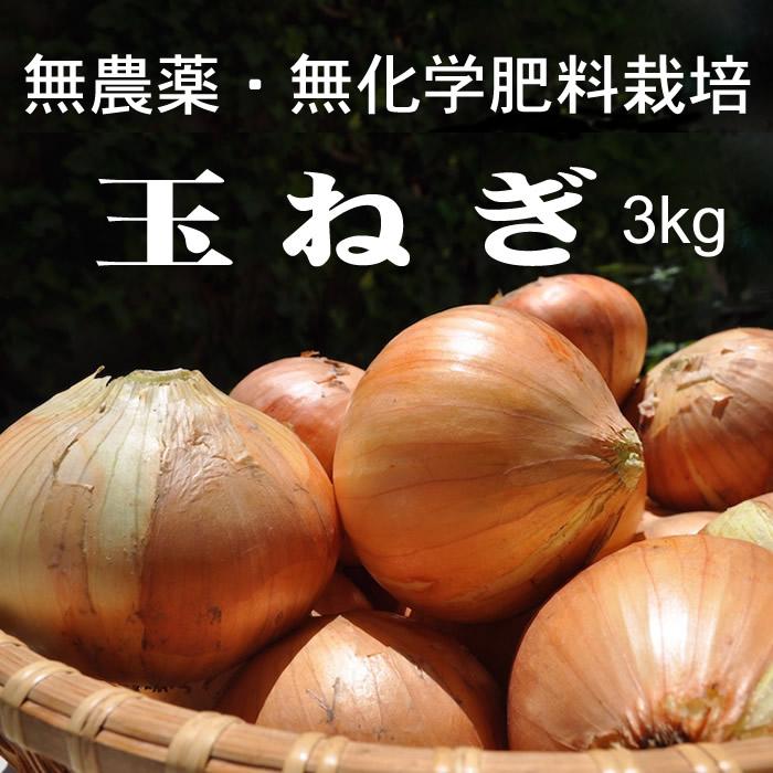 画像1: 無農薬・有機栽培 新玉ねぎ1箱 約3kg 送料込み (1)