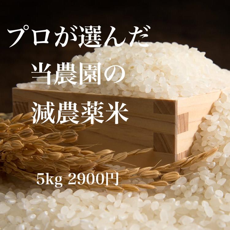 画像1: 令和元年度産 業務用減農薬米 ひのひかり 5kg (1)