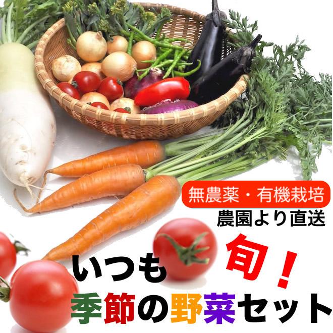 画像1: 無農薬・有機栽培 旬の野菜セット 送料込 (1)